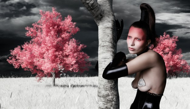"""Wonder World / extract from the book """"THE DARK SIDE & THE LIGHT SIDE"""" a project of the creative director Barbara Bozzini"""